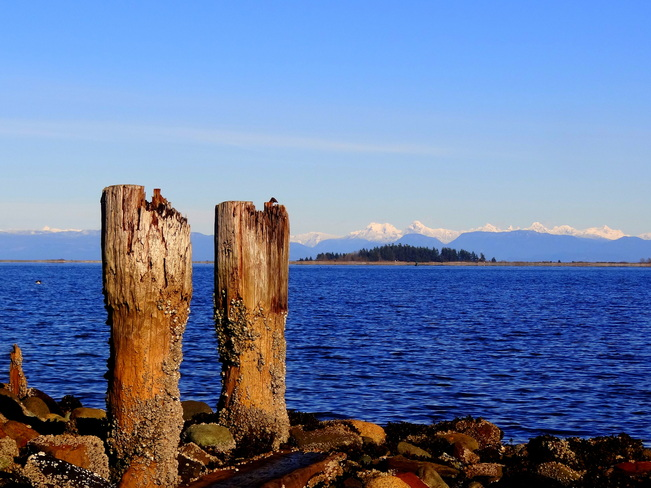 Snow in the distant Mainland mountains Union Bay, British Columbia Canada