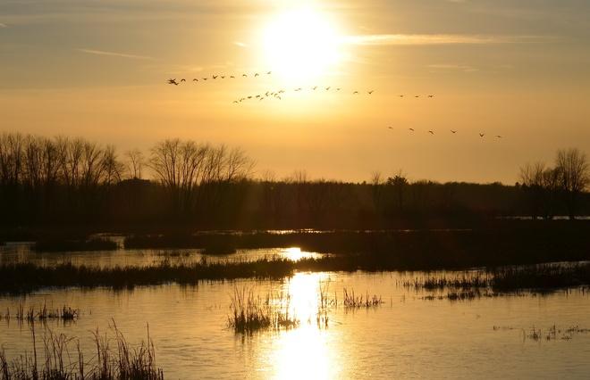 Sun slowly setting on frozen marsh