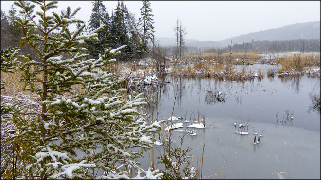 Sheriff Creek pond scenic on this snowy day. Elliot Lake, Ontario Canada