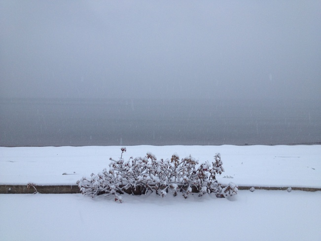 First Snow on the Bay Bathurst, New Brunswick Canada