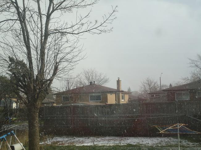 Snowfall Malton, Ontario Canada