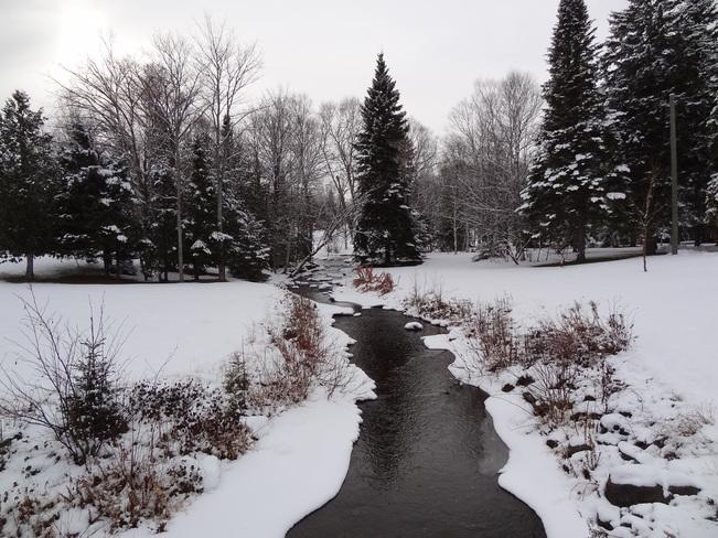 Snowy Scenery Bathurst, New Brunswick Canada