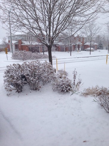 Officially Winter Kanata, Ontario Canada