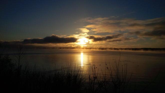Ducky Morning Barrie, Ontario Canada