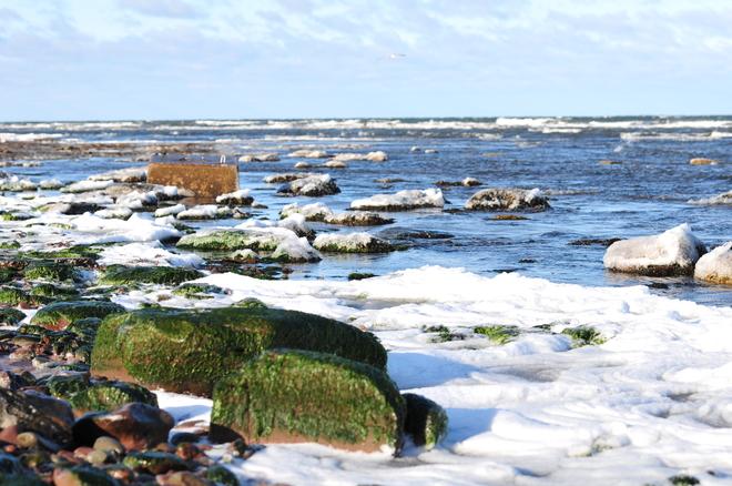 A very cold morning in Cap-Pele. Cap-Pele, New Brunswick Canada
