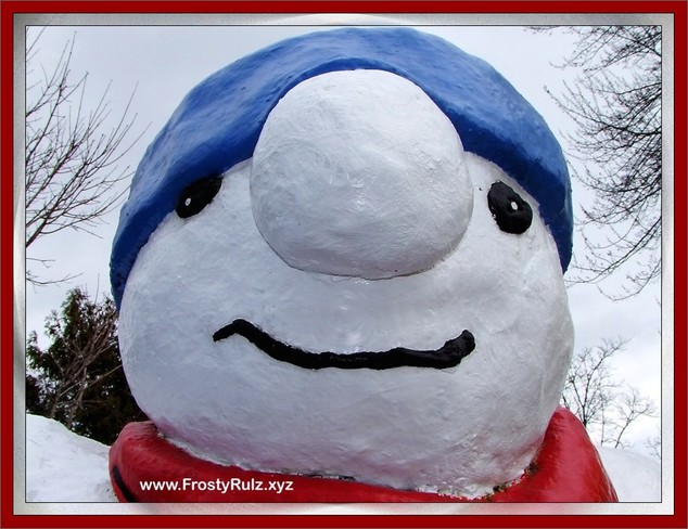Frosty the Snow Man says..... Simcoe, Ontario Canada
