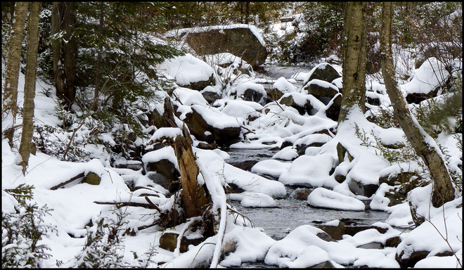 Sheriff Creek, small creek on the red trail. Elliot Lake, Ontario Canada