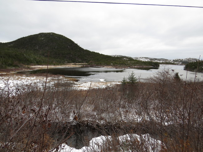 Ice in the pond Rock Harbour, Newfoundland and Labrador Canada