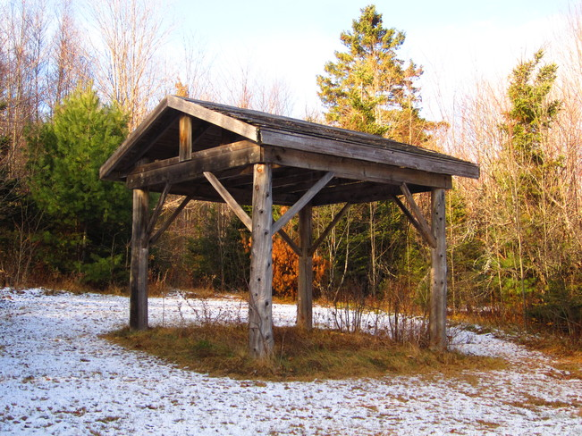 shelter in woods Nackawic, New Brunswick Canada
