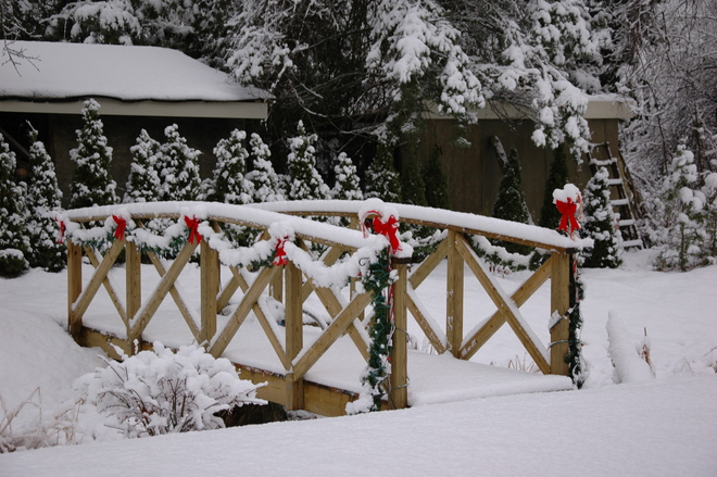 It's getting to look a lot like Christmas! Cobourg, Ontario Canada
