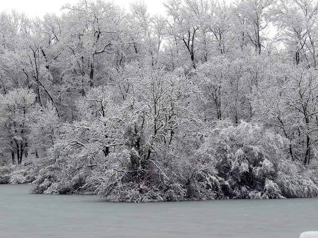 Snowy day Niagara Falls, Ontario Canada
