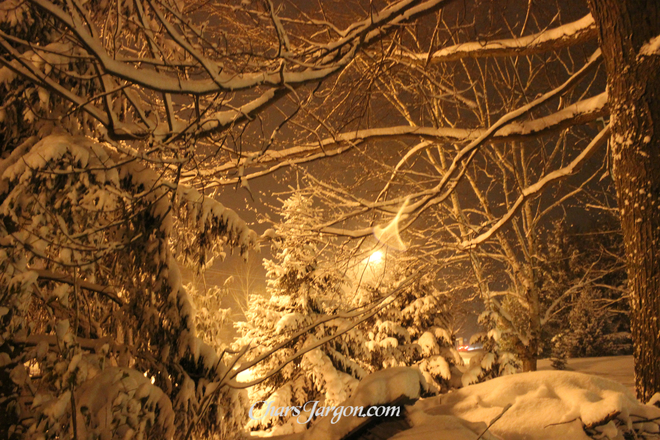 Loving winter through the eye of a lens Delaware, Ontario Canada