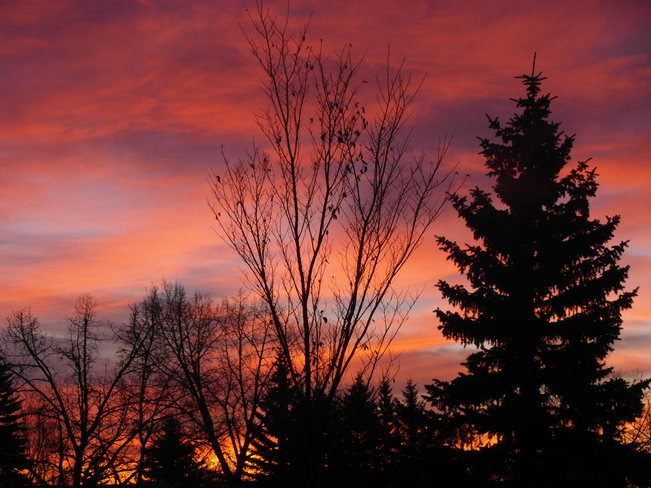 sunrise.Enjoying all of mother natures gifts Calgary, Alberta Canada