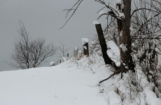 A snow day Arnprior, Ontario Canada