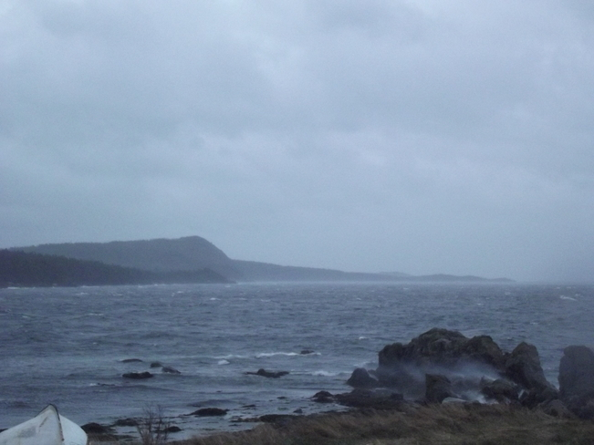 Stormy Windy Day. Dover, Newfoundland and Labrador Canada