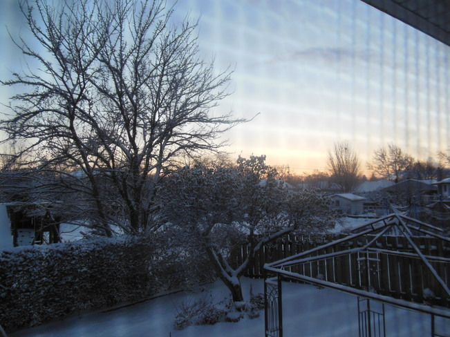 Snow in the Morning St. Catharines, Ontario Canada
