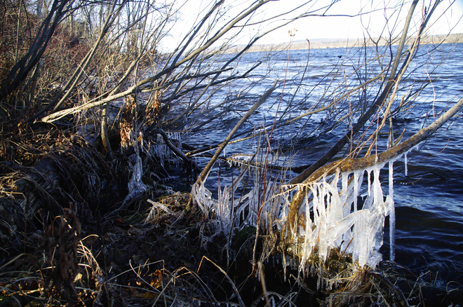 Ice along the river Fredericton, New Brunswick Canada