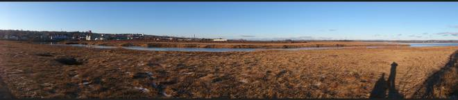 Wolfville Channel of ducks 180 Degrees Wolfville, Nova Scotia Canada