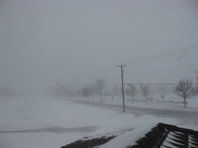 Blizzard White Out at Claresholm Claresholm, Alberta Canada