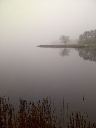 A foggy December day on the Lahave River. Corpus Christi, Texas United States