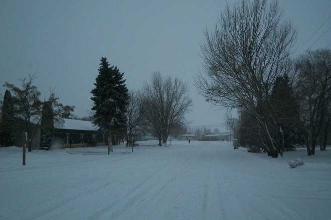 out for a morning walk St. Malo, Manitoba Canada