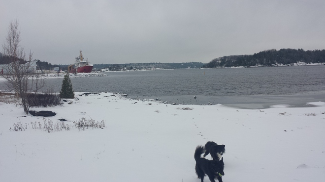 A Cold Day for Play Parry Sound, Ontario Canada