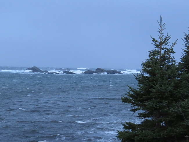 strong winds Rock Harbour, Newfoundland and Labrador Canada