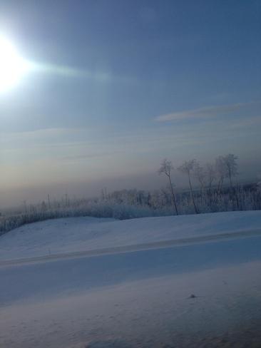coooldddd frosty Wood Buffalo, Alberta Canada