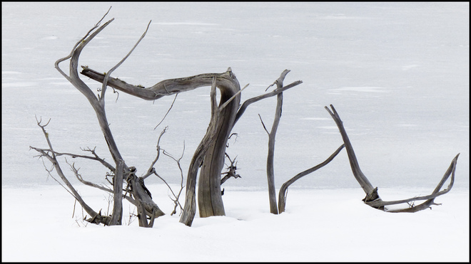 Shriff Creek, wood sculpture on the frozen pond. Elliot Lake, Ontario Canada