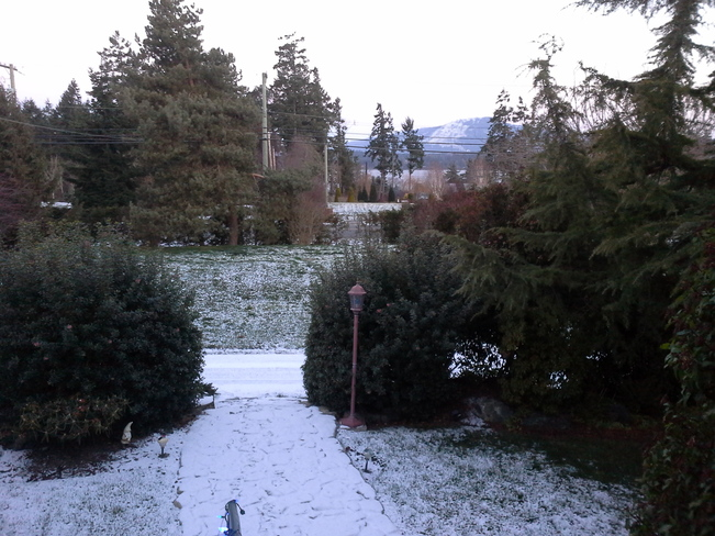 The first snow North Saanich, British Columbia Canada