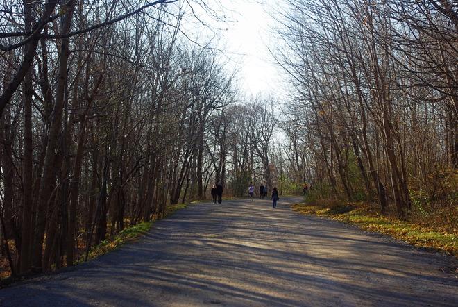 Mount Royal Park Montréal, Quebec Canada