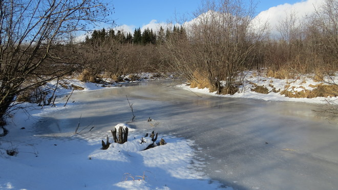 Sharpes Creek almost ready for skating Rutherglen, Ontario Canada