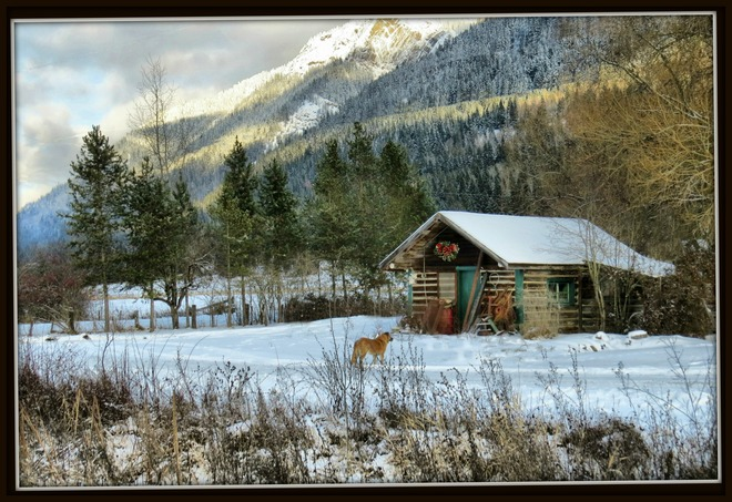 The neighbours cottage. Enderby, British Columbia Canada