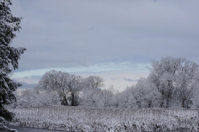 Wonder of Winter Ajax, Ontario Canada