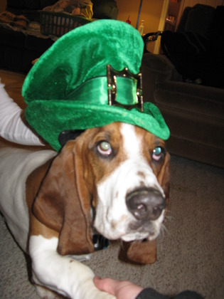 norman st patricks hat 003.jpg