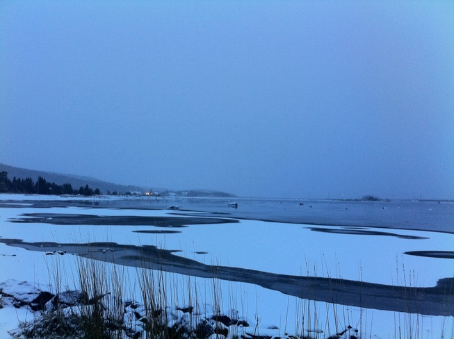 Morning Freeze Gander, Newfoundland and Labrador Canada