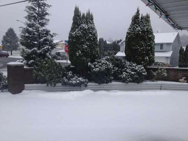 Snowing more than 1 cm Abbotsford, British Columbia Canada