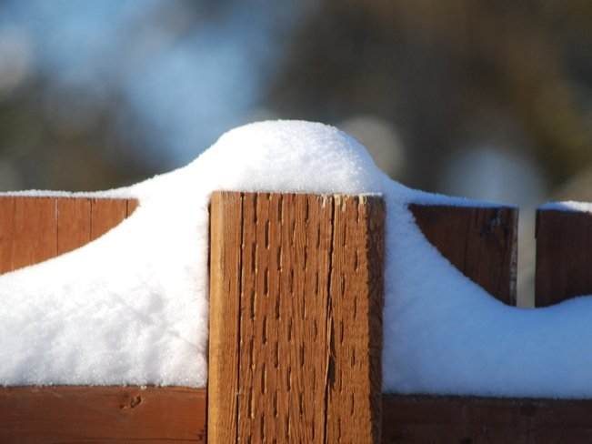 Snow on a Fence Brandon, Manitoba Canada