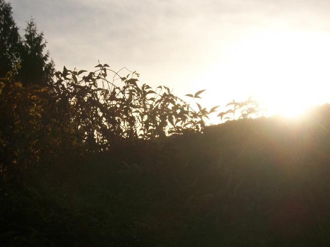 The sun goes down Mission, British Columbia Canada
