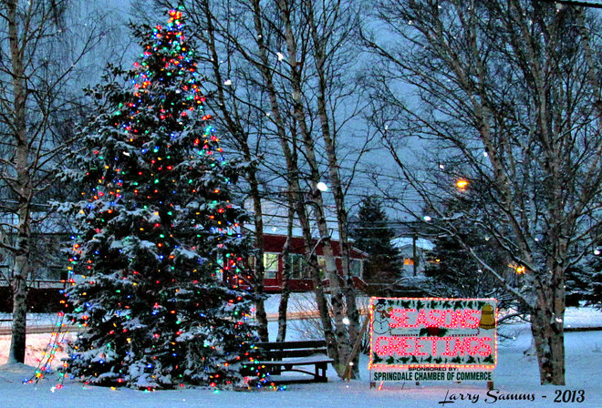 """Community Christmas Tree"" Springdale, Newfoundland and Labrador Canada"