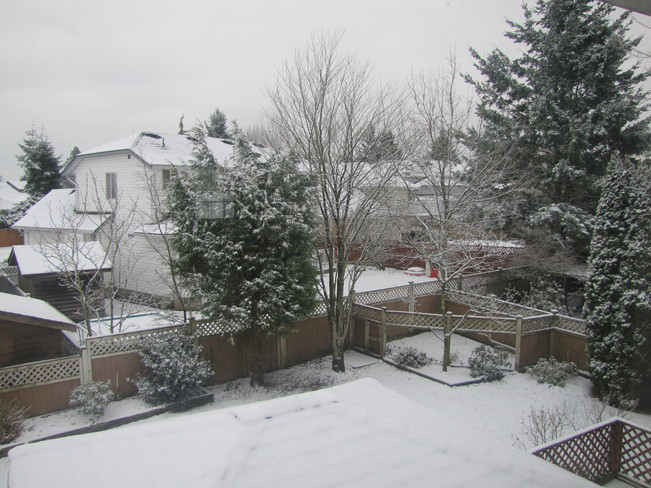 Season's First snow in Abbotsford Abbotsford, British Columbia Canada