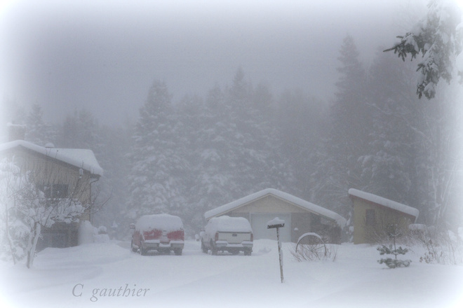 Heavy snow in the late afternoon. Magnetawan, Ontario Canada