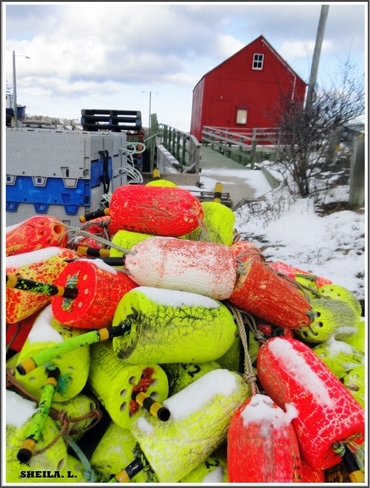 Snow On The Buoys Canning, Nova Scotia Canada