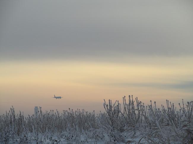 Frosty Calgary, Alberta Canada