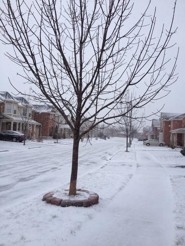 snow Milton, Ontario Canada