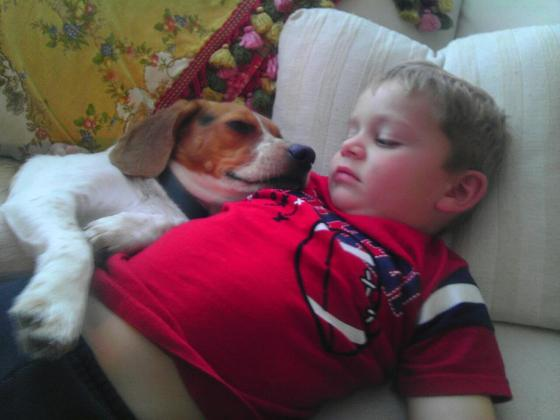 The traditional nap after Thanksgiving stuffing....