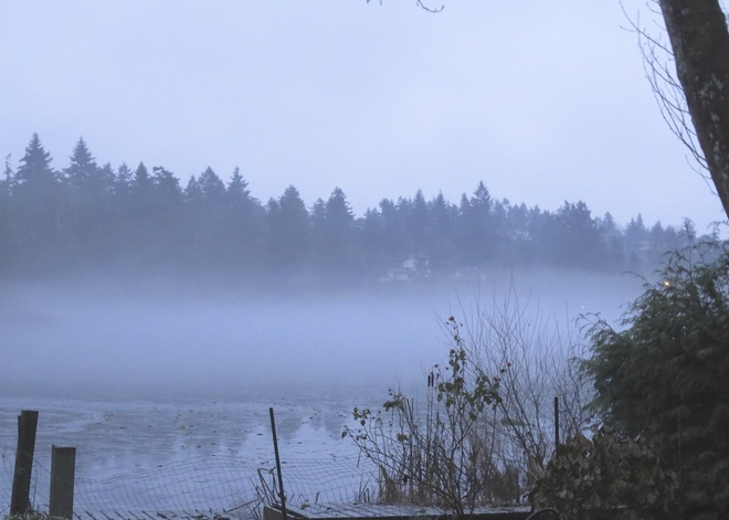 The Fog Rolls In Langford, British Columbia Canada