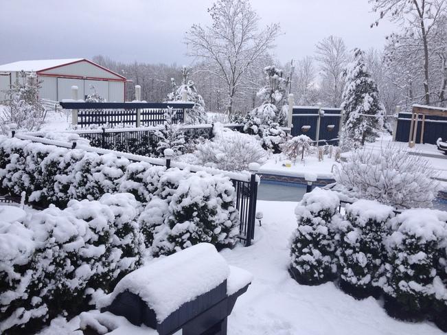 Snow Backyard Niagara Falls, Ontario Canada