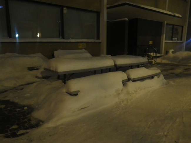 snow benches Edmonton, Alberta Canada