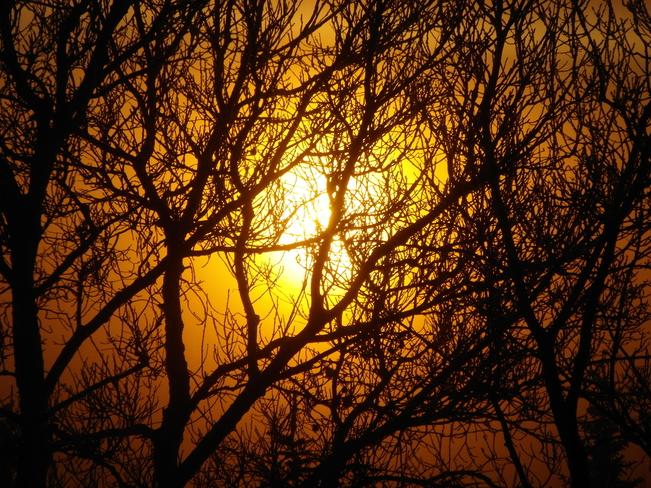 May the sun warm you today! Calgary, Alberta Canada